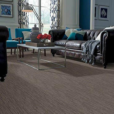 Anso® Nylon Carpet in Picayune, MS